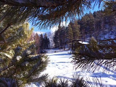Последние дни зимы на Алтае