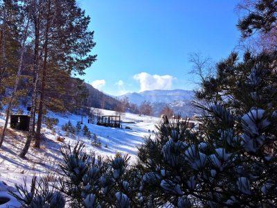 Стрелковая площадка зимой
