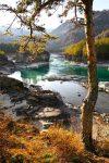Уникальная природа и климат Чемала