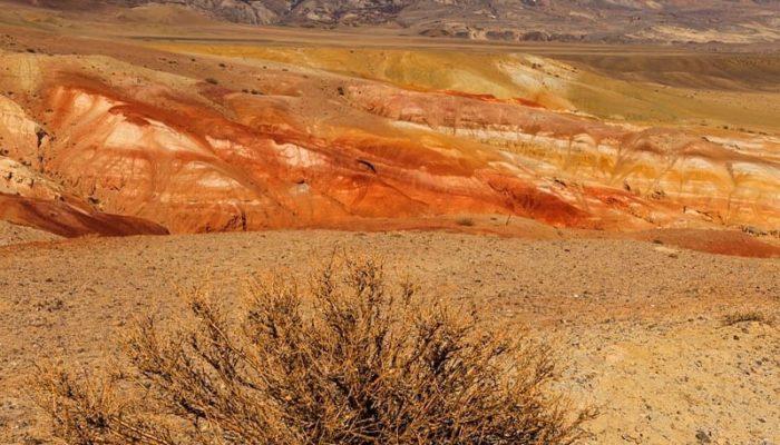 Марсовый Алтай